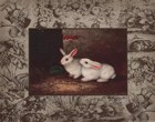 Rabbit Art Prints