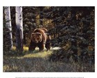 Wildlife Art Prints