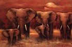 Elephant Art Prints