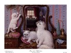 Cats and Kittens Art Prints