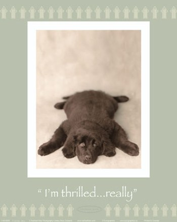 I'm Thrilled  Fine-Art Print