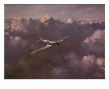 Flight of Freedom  Fine-Art Print