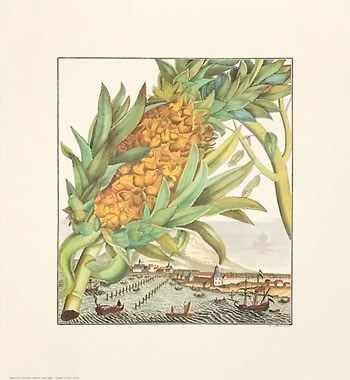 Pineapple With Ships  Fine-Art Print