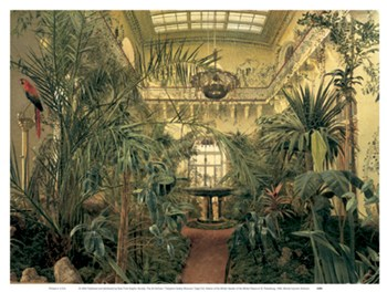 Interior of the Winter Garden of the Winter Palace at St. Petersburg  Fine-Art Print