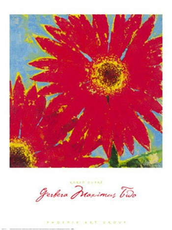 Gerbera Maximus Two  Fine-Art Print