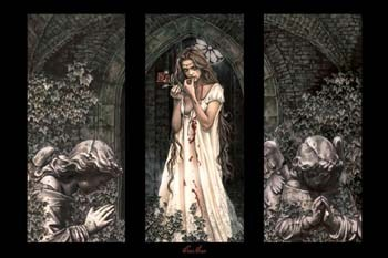 Rose (triptych)  Wall Poster