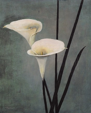 Call Lily on Grey  Fine-Art Print