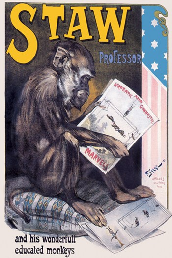 Professor Staw and His Wonderful Educated Monkeys  Fine-Art Print