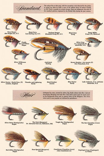 Fly fishing lures standard and hair fine art print for Fly fishing posters