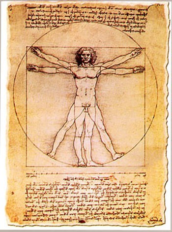 Proportions of the Human Figure  Fine-Art Print