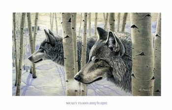 Among the Aspens  Fine-Art Print