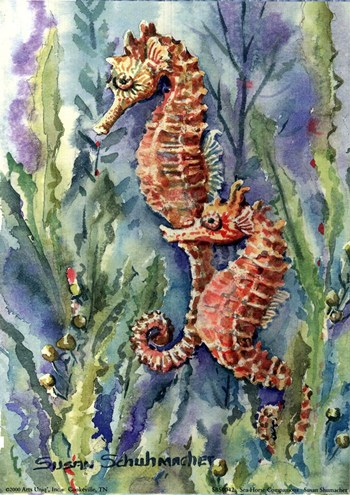 Canvas on pinterest canvas paintings seahorses and canvases for Sea life paintings artists