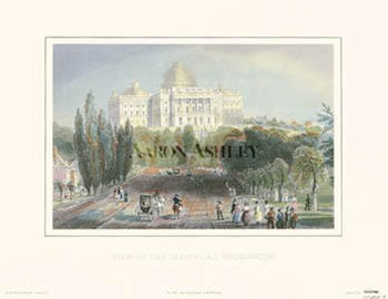 View Of The Capitol  Fine-Art Print