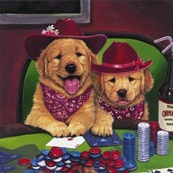 Puppy playing poker low stake poker strategy