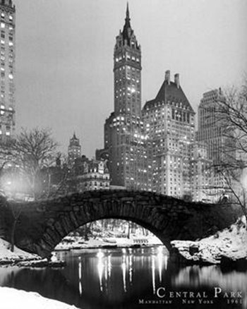 New York-Central Park  Wall Poster