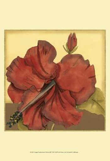 Cropped Sophisticated Hibiscus III  Fine-Art Print