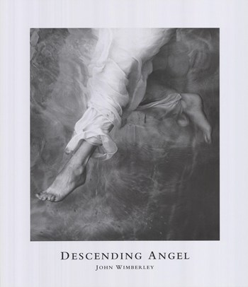 Descending Angel  Fine-Art Print