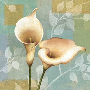 Lily Dream II  Fine-Art Print