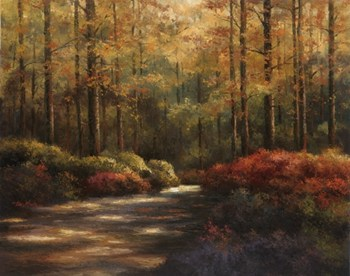 Autumn Trail  Fine-Art Print