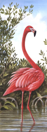 Flamingo 2  Fine-Art Print
